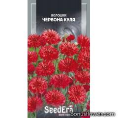 Васильки полевые Красный шар