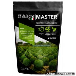 Удобрение Master для самшита и вечнозеленых кустарников, 250г, Valagro