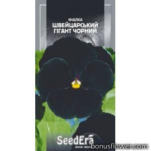 Фиалка садовая Швейцарский гигант черный