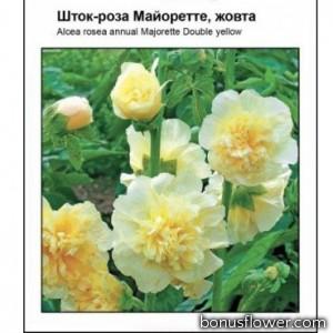 Мальва Майоретте желтая
