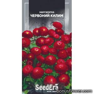 Маргаритка Красный ковер
