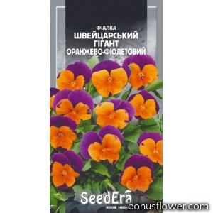 Фиалка садовая Швейцарский гигант оранжево-фиолетовый