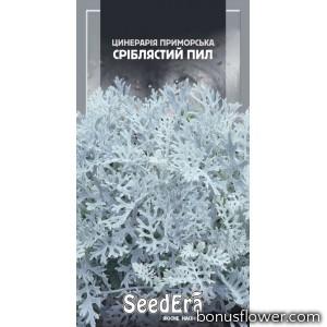Цинерария Приморская Серебристая пыль
