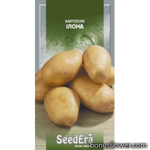 Семена картофеля Илона