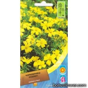 Бархатцы развесистые желтые