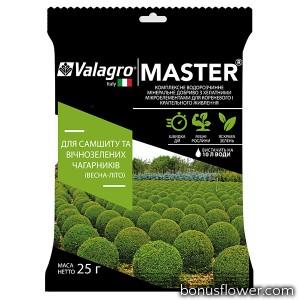 Удобрение Master для самшита и вечнозеленых кустарников, 25 г, Valagro