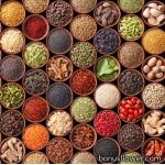 Семена лекарственных, пряно-ароматных растений