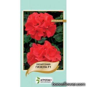 Пеларгония садовая Гизела F1