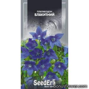Платикодон крупноцветковый голубой