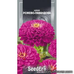 Цинния высокорослая элегантная розово-лавандовая